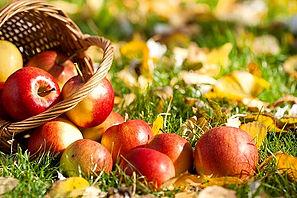 Яблочный спас гадания